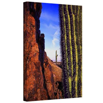 Brushstone Painted Rocks Arizona Gallery Wrapped Canvas Wall Art