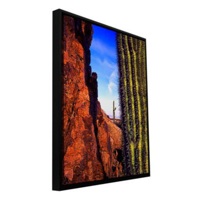 Brushstone Painted Rocks Arizona Gallery Wrapped Floater-Framed Canvas Wall Art