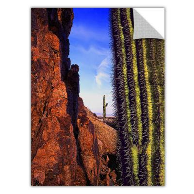 Brushstone Painted Rocks Arizona Removable Wall Decal