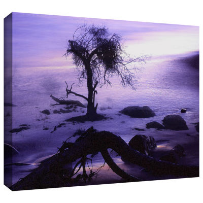 Brushstone Sand And Snow Gallery Wrapped Canvas Wall Art