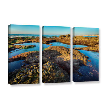 Brushstone La Jolla New Year King Tide 1 3-pc. Gallery Wrapped Canvas Wall Art