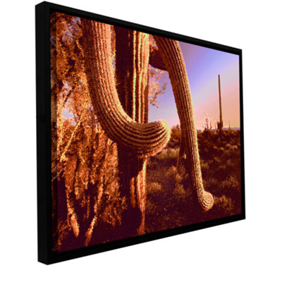 Brushstone Sonoran Heat Gallery Wrapped Floater-Framed Canvas Wall Art