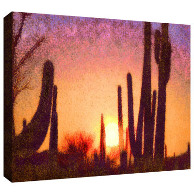 Brushstone Sonoran Summer Gallery Wrapped Canvas Wall Art