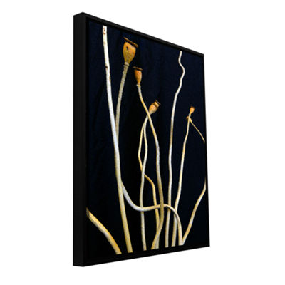 Brushstone Still Perspective Gallery Wrapped Floater-Framed Canvas Wall Art
