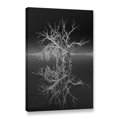Brushstone Mirror Mirror Black And White Gallery Wrapped Canvas Wall Art