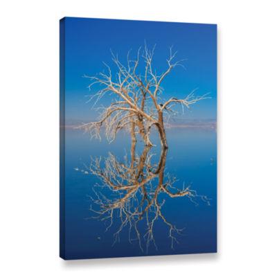 Brushstone Mirror Mirror Gallery Wrapped Canvas Wall Art
