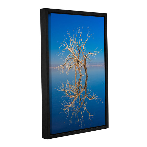 Brushstone Mirror Mirror Gallery Wrapped Floater-Framed Canvas Wall Art