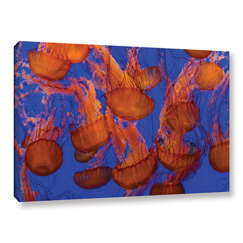 Brushstone Pacific Sea Nettle Cluster 1 Gallery Wrapped Canvas Wall Art