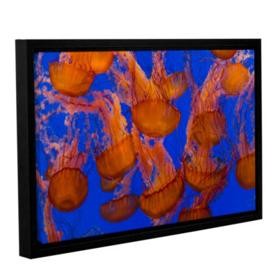 Brushstone Pacific Sea Nettle Cluster 1 Gallery Wrapped Floater-Framed Canvas Wall Art