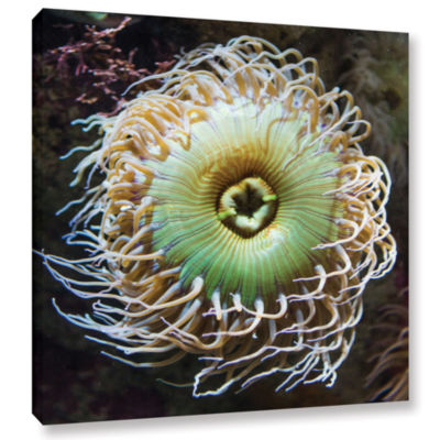 Brushstone Pucker Up Gallery Wrapped Canvas Wall Art