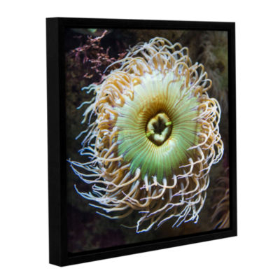 Brushstone Pucker Up Gallery Wrapped Floater-Framed Canvas Wall Art