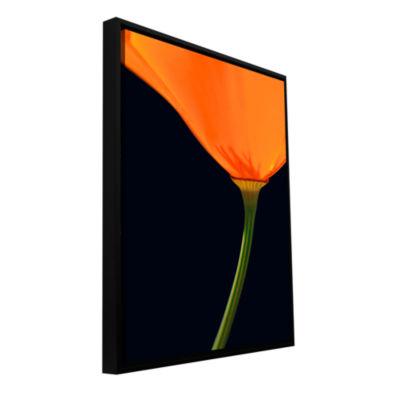 Brushstone Pauma Valley Poppy Gallery Wrapped Floater-Framed Canvas Wall Art