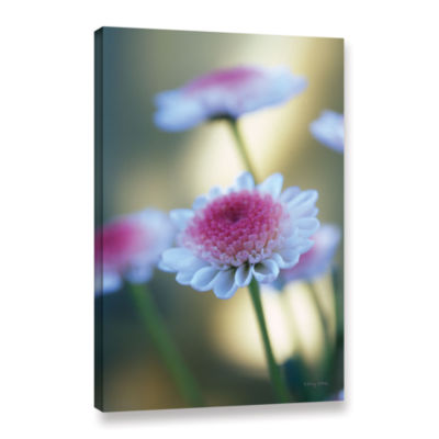 Brushstone Like A Dream Gallery Wrapped Canvas Wall Art