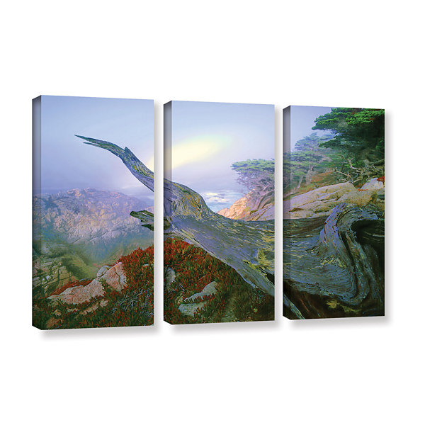 Brushstone Like A Flame 3-pc. Gallery Wrapped Canvas Wall Art