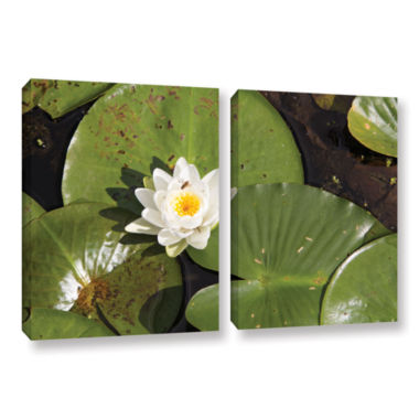 Brushstone Lily Pad 2-pc. Gallery Wrapped Canvas Wall Art