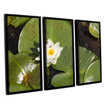 Brushstone Lily Pad 3-pc. Floater Framed Canvas Wall Art