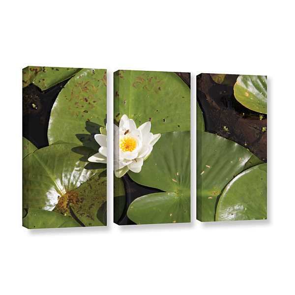 Brushstone Lily Pad 3-pc. Gallery Wrapped Canvas Wall Art