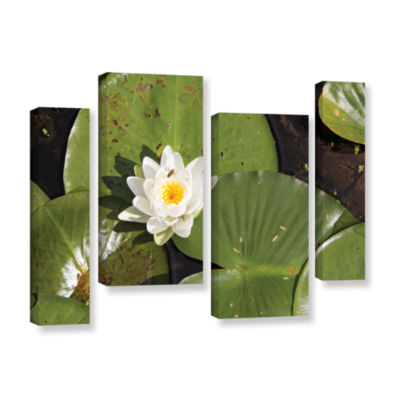 Brushstone Lily Pad 4-pc. Gallery Wrapped Staggered Canvas Wall Art