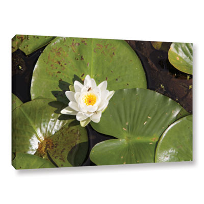 Brushstone Lily Pad Gallery Wrapped Canvas Wall Art