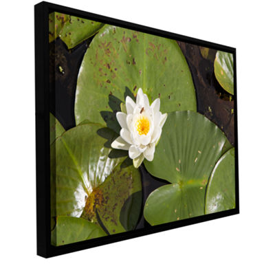 Brushstone Lily Pad Gallery Wrapped Floater-FramedCanvas Wall Art