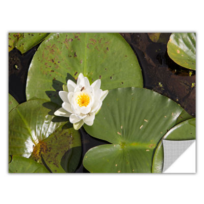 Brushstone Lily Pad Removable Wall Decal