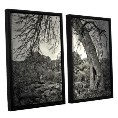 Brushstone Listen To Whispers 2-pc. Floater FramedCanvas Wall Art