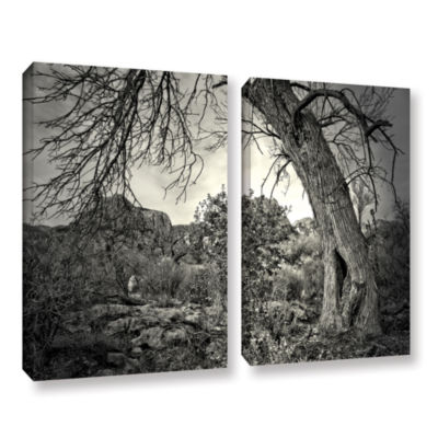 Brushstone Listen To Whispers 2-pc. Gallery Wrapped Canvas Wall Art