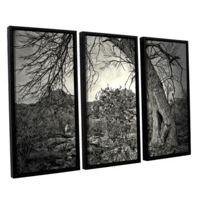 Brushstone Listen To Whispers 3-pc. Floater FramedCanvas Wall Art