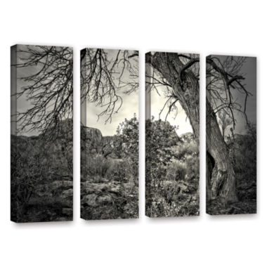 Brushstone Listen To Whispers 4-pc. Gallery Wrapped Canvas Wall Art