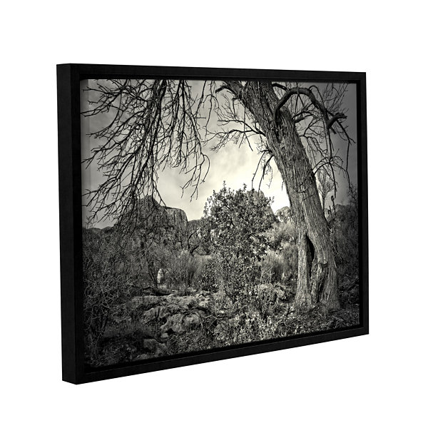 Brushstone Listen To Whispers Gallery Wrapped Floater-Framed Canvas Wall Art