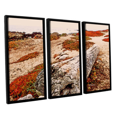 Brushstone Log On Pebble Beach 3-pc. Floater Framed Canvas Wall Art