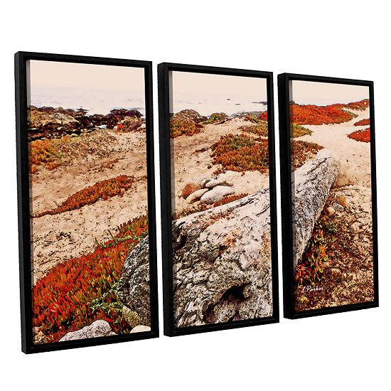 Brushstone Log On Pebble Beach 3-pc. Floater Framed Canvas Wall Art