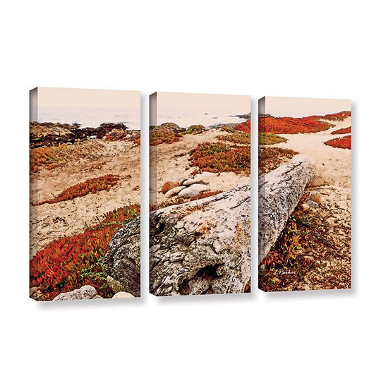 Brushstone Log On Pebble Beach 3-pc. Gallery Wrapped Canvas Wall Art
