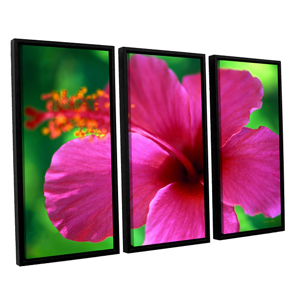 Brushstone Maui Pink Hibiscus 3-pc. Floater FramedCanvas Wall Art