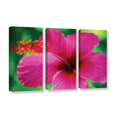 Brushstone Maui Pink Hibiscus 3-pc. Gallery Wrapped Canvas Wall Art