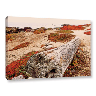 Brushstone Log On Pebble Beach Gallery Wrapped Canvas Wall Art