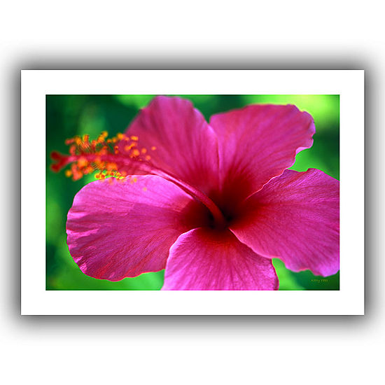 Brushstone Maui Pink Hibiscus Canvas Wall Art - JCPenney