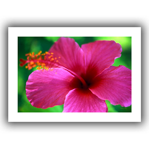 Brushstone Maui Pink Hibiscus Canvas Wall Art