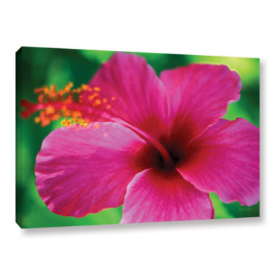 Brushstone Maui Pink Hibiscus Gallery Wrapped Canvas Wall Art