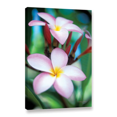 Brushstone Maui Plumeria Gallery Wrapped Canvas Wall Art