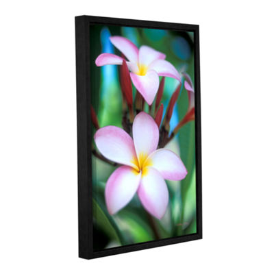 Brushstone Maui Plumeria Gallery Wrapped Floater-Framed Canvas Wall Art