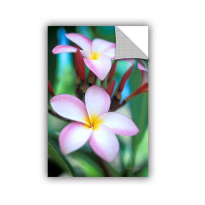 Brushstone Maui Plumeria Removable Wall Decal