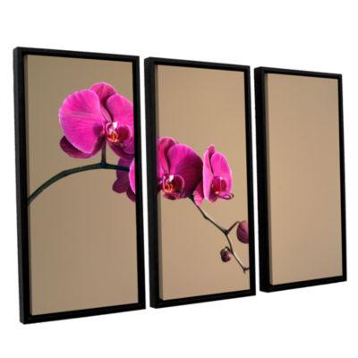 Brushstone Magenta Orchid 3-pc. Floater Framed Canvas Wall Art