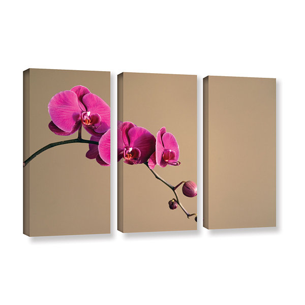 Brushstone Magenta Orchid 3-pc. Gallery Wrapped Canvas Wall Art