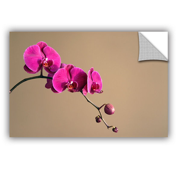 Brushstone Magenta Orchid Removable Wall Decal