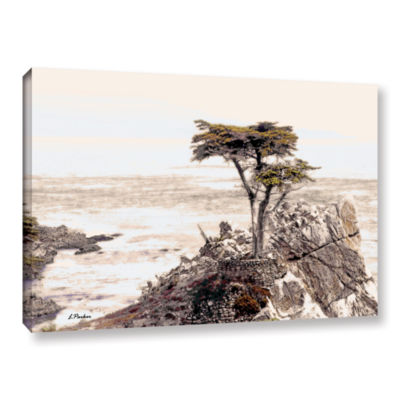 Brushstone Lone Cypress 3 Gallery Wrapped Canvas Wall Art