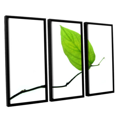 Brushstone Lone Leaf 3-pc. Floater Framed Canvas Wall Art