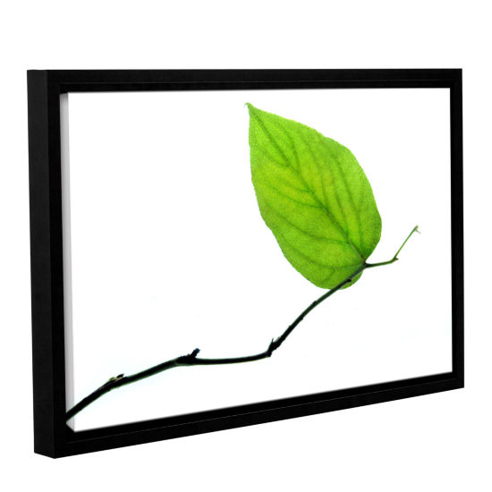 Brushstone Lone Leaf Gallery Wrapped Floater-Framed Canvas Wall Art