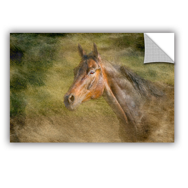 Brushstone Majestic Horse Removable Wall Decal