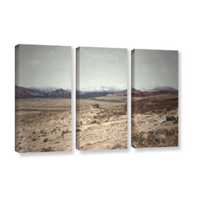 Brushstone Looking Ahead 3-pc. Gallery Wrapped Canvas Wall Art